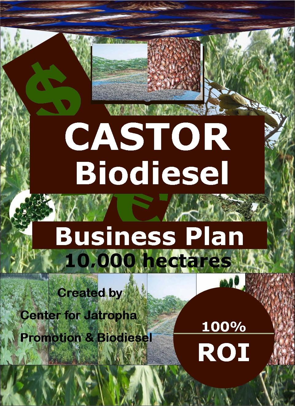 Biodiesel plant business plan