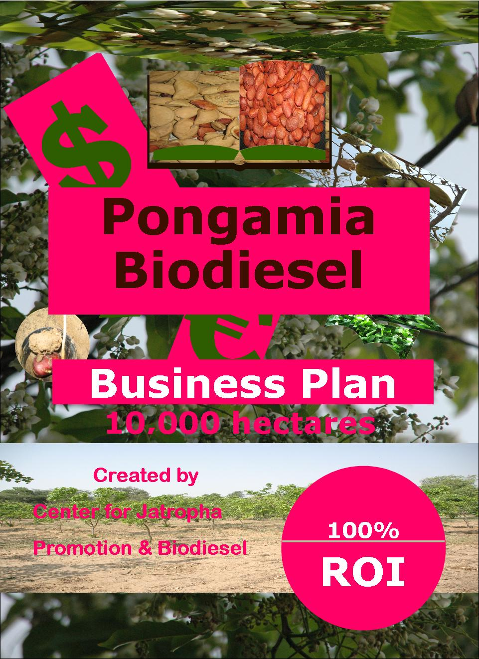 pongamia biodiesel business plan 10000 ha