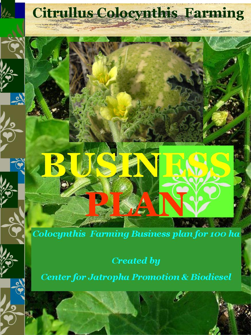Citrullus Colocynthis farming business plan