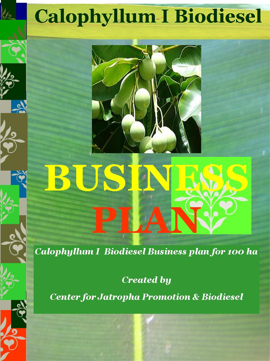 calophyllum biodiesel business plan