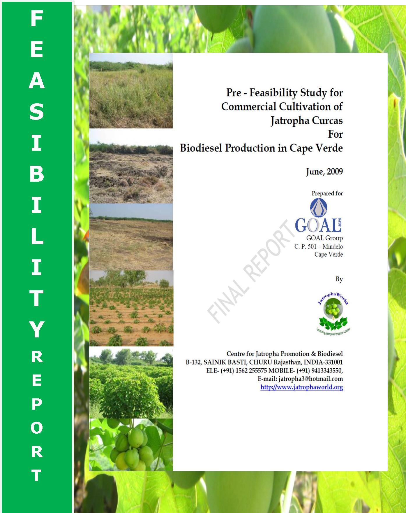 biodiesel technology and business opportunities Opportunities in biotechnology and business it is likely that this industry will mature and expand significantly to provide excellent opportunities for students.