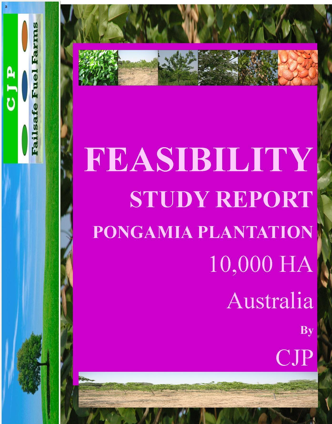 feasibility study on biofuel Sustainable aviation fuel at each stage in the production and distribution chain qantas and shell aviation biofuel feasibility study.