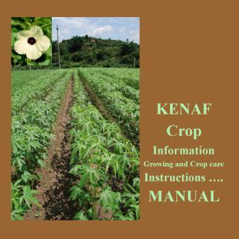 kenaf growing guide