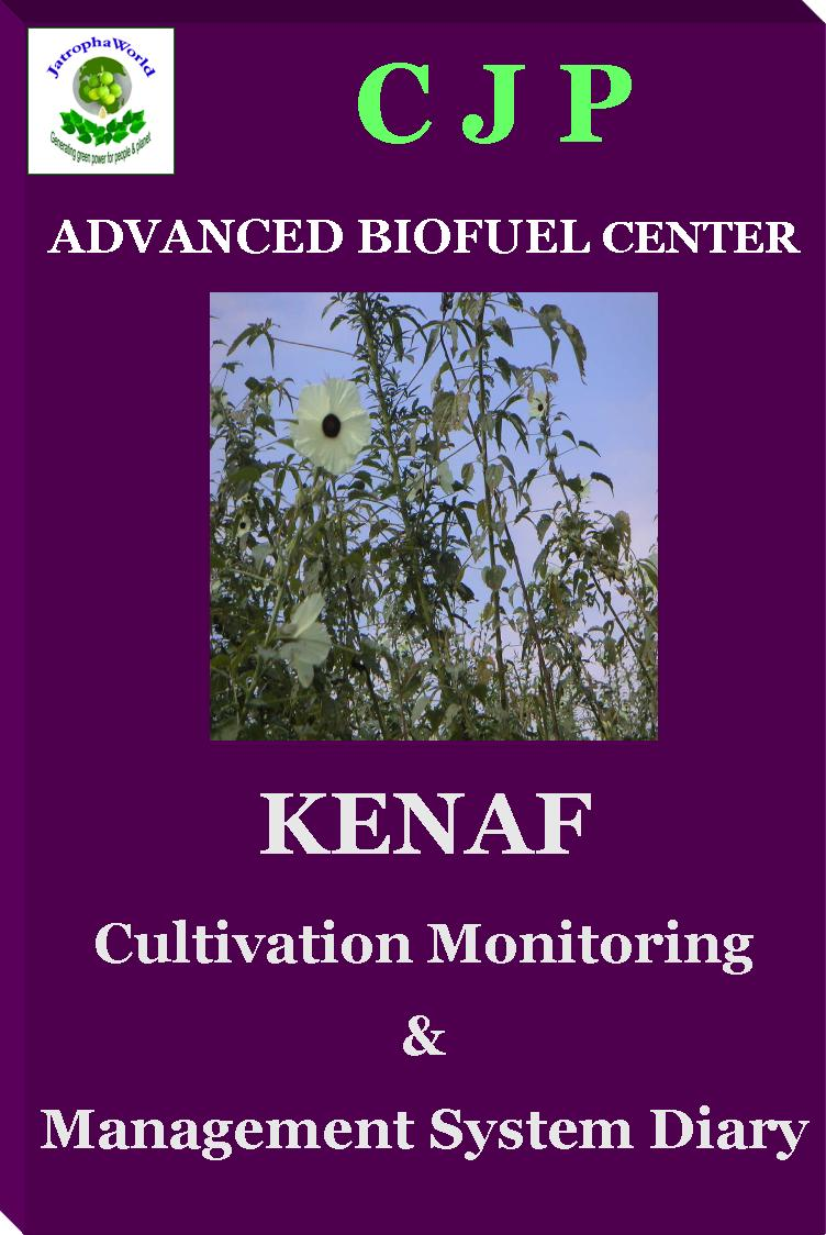 kenaf cultivation management