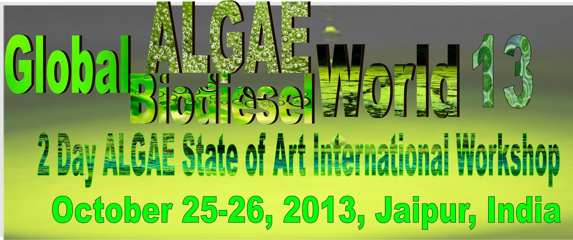 algae biodiesel world 2013