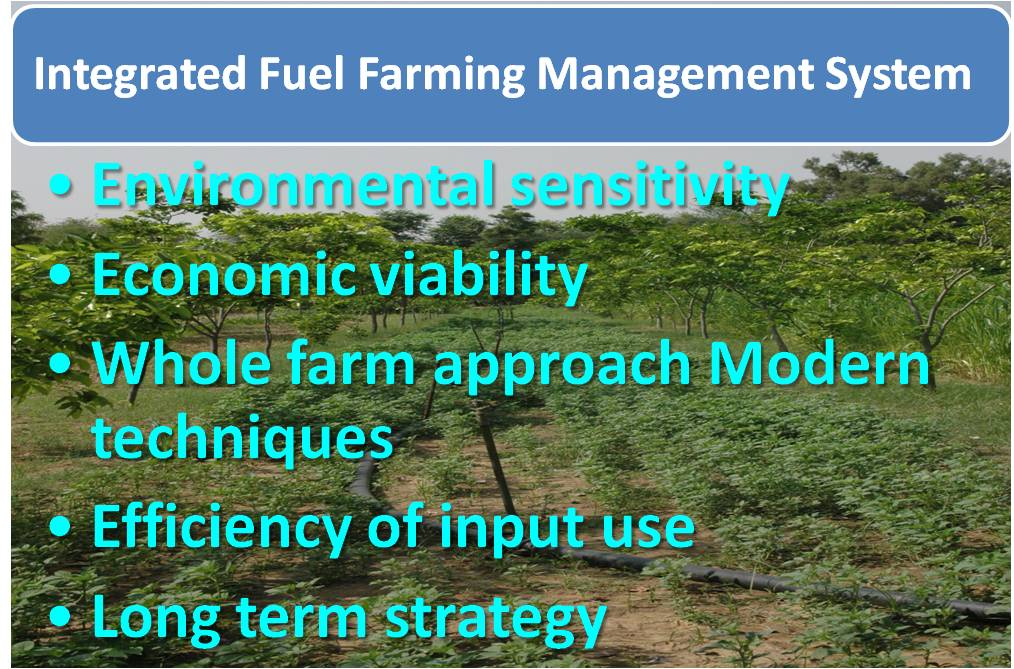 cjp fuel farming