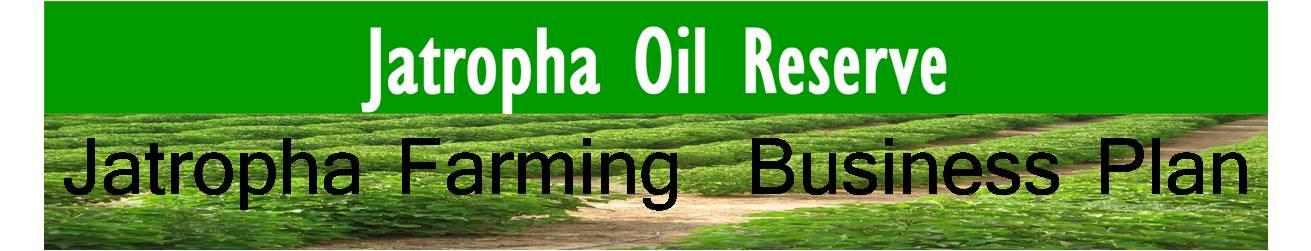 Jatropha farming business plan