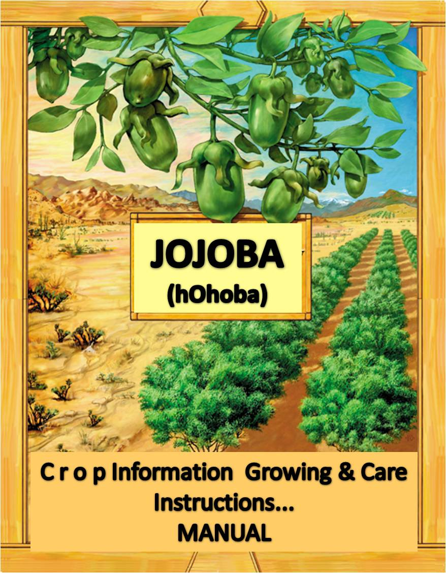 jojoba crop guide