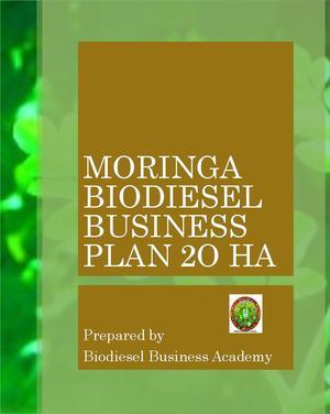 business plan produzione biodiesel