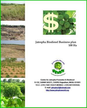jatropha biodiesel business plan